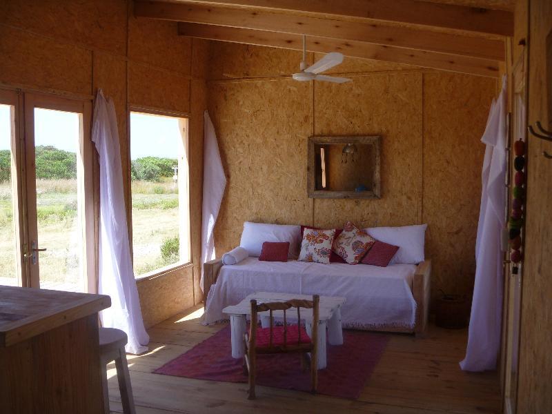 Beach House in Oceania del Polomio, Rocha Uruguay - Image 1 - Rocha - rentals