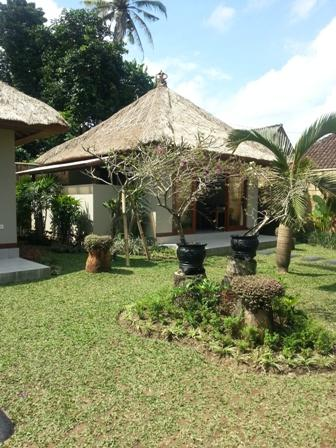large the garden - suka's house ubud,bed & breakfast - Ubud - rentals