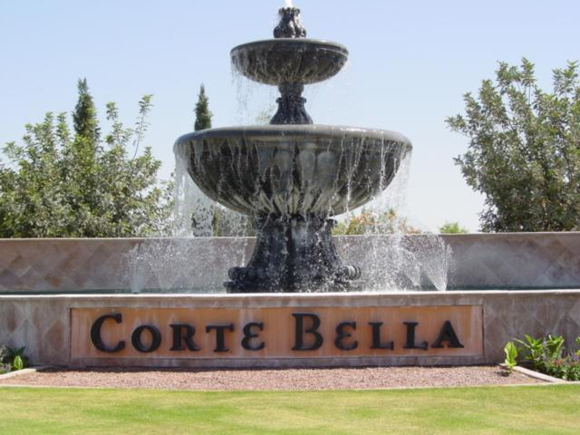 Private and gated community - Image 1 - Sun City West - rentals