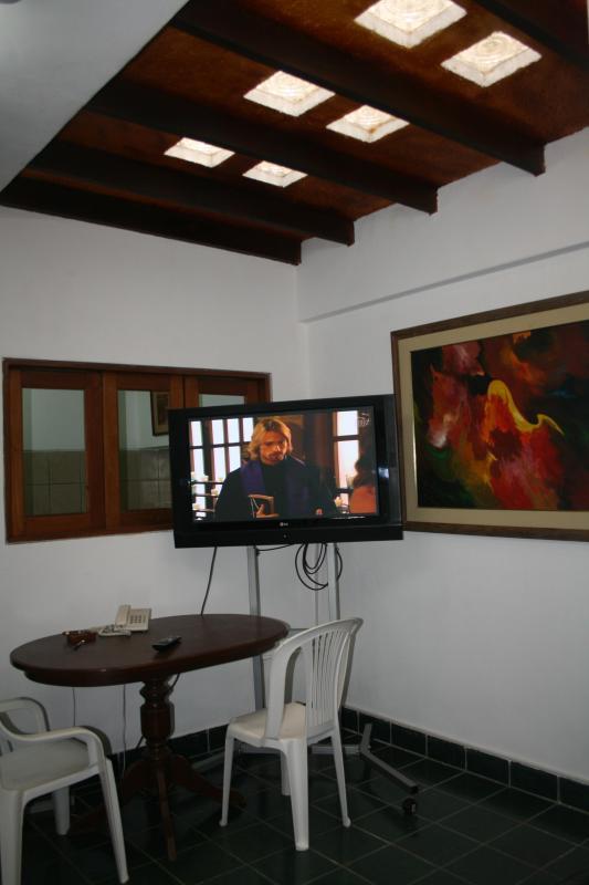 Living room - QUIET AND NICE APARTMENT IN MIRAFLORES - Lima - rentals