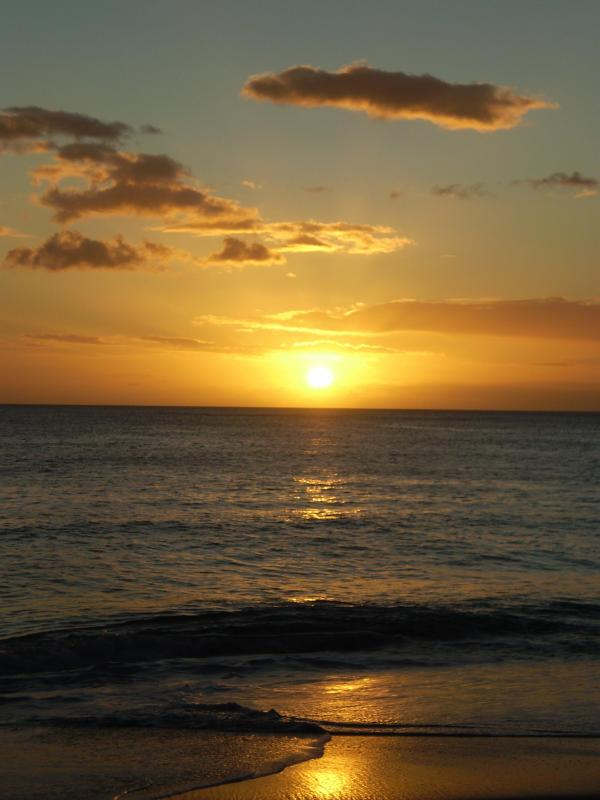 Oceanfront sunset - every night's another show! - MA`ILI COVE - OAHU OCEANFRONT  SUNSET PARADISE - Waianae - rentals