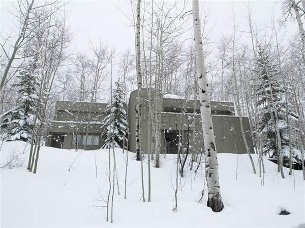 FARAWAY HAUS - Image 1 - Snowmass Village - rentals