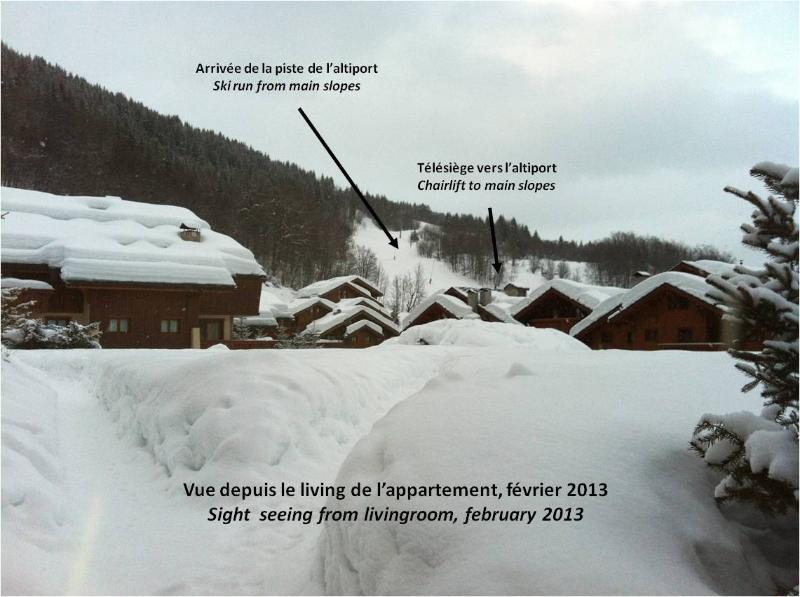 Snow from living - 3 Vallées ski resort, chalet type appartment. - Meribel - rentals