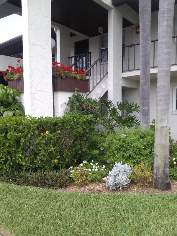 Outside view - Condo minutes to the Gulf of Mexico - Largo - rentals