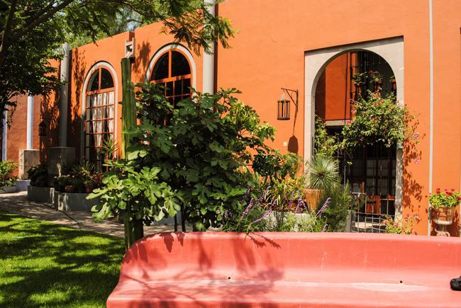 Casa Oasis - Casa Oasis - San Miguel de Allende - rentals