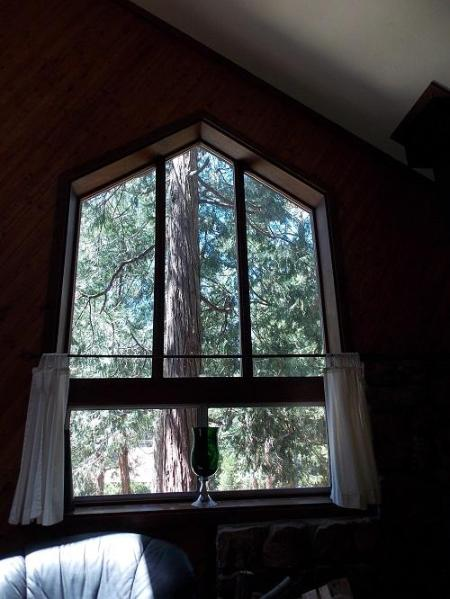 Beautiful Windows - Hidden Oaks of Beautiful Idyllwild - Idyllwild - rentals