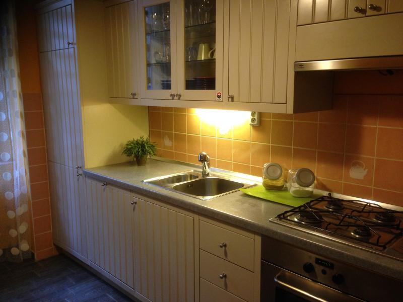 The Super Kitchen - Central Apartment 1-6 People - Prague - rentals