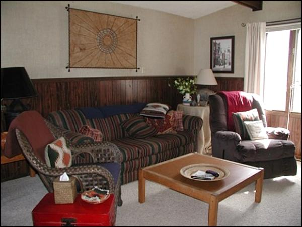 Sunny Living Room Offers Wonderful Mountain Views - Great Family Vacation Home - Quality, Affordable Accommodations (1398) - Crested Butte - rentals