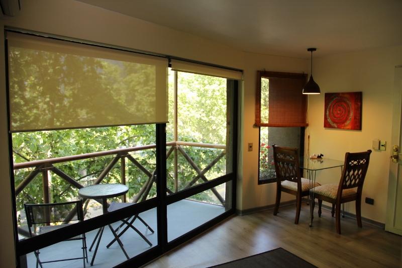 Living room - Apartment Excellent location Provi - Santiago - rentals