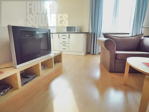 1721 - Image 1 - Moscow - rentals