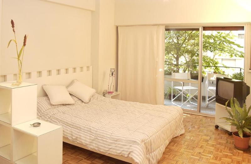 Charming studio in Recoleta, the most chic neighbourhood in Buenos Aires - Image 1 - Buenos Aires - rentals