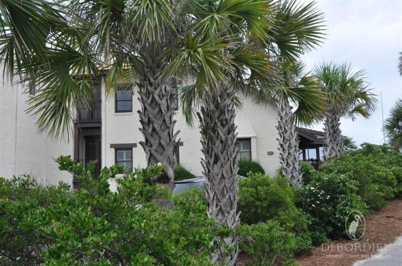 #227 Patewood Partners - Image 1 - Georgetown - rentals