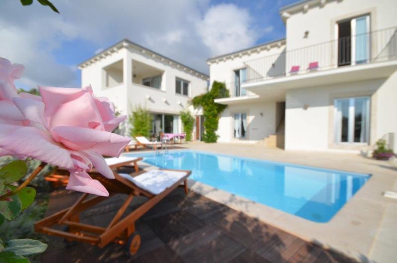 Beautifull 4 bedroom villa with private pool - Image 1 - Rakalj - rentals