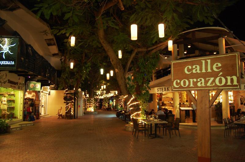 APARTMENT IN THE HEART OF PLAYA DEL CARMEN, MEXICO - Image 1 - Playa del Carmen - rentals