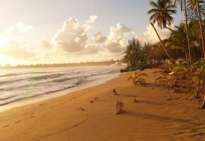 From the Backyard Straight into the Water - When we say Beachfront we mean on the beach! - Luquillo - rentals