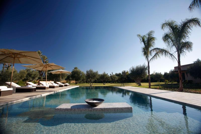 Swimming pool - Magnificent guesthouse in Marrakech Palmgrove - Marrakech - rentals