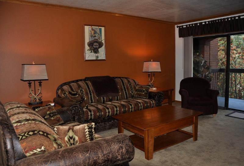 Newly decorated living room - Park Station One Bedroom One Bath Top floor unit - Park City - rentals