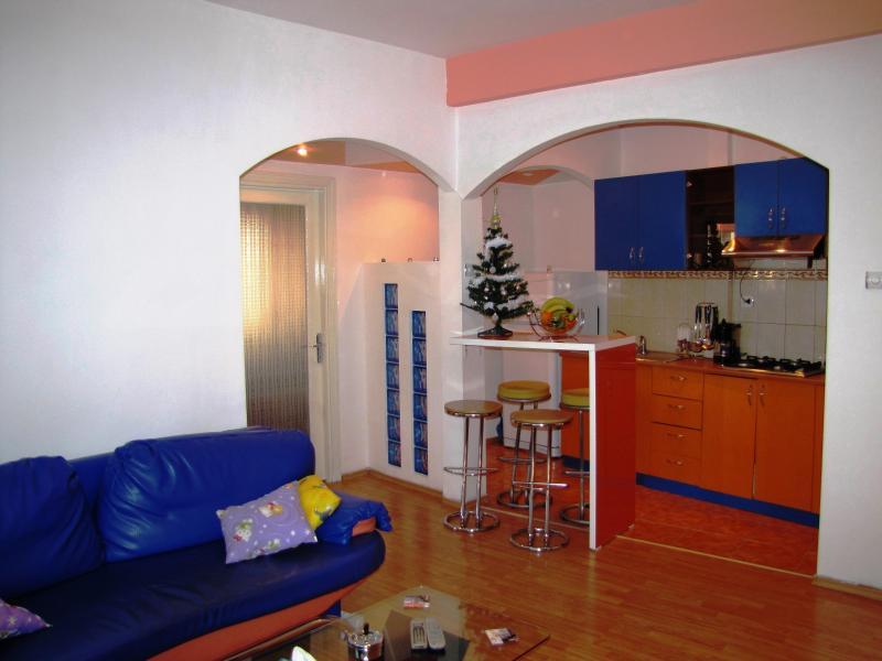 One bedroom apartment Bucharest city center - Image 1 - Bucharest - rentals