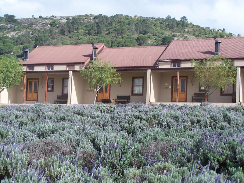 Cottages, 6 available with 2 bedrooms each for up to 5 guests per cottage - Nine Oaks Self-catering Accommodation - Paarl - rentals