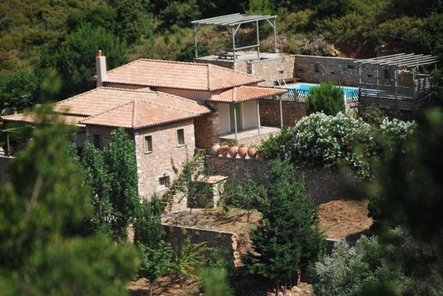 HIBISCUS VILLA - Hibicus Villa - Agios Petros - rentals