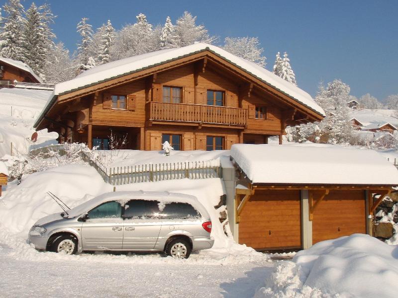 Louladou in Winter - Chalet in Swiss ski resort - Gryon - rentals