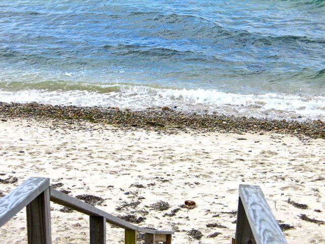 Waterfront Beach Cottage! (Waterfront-Beach-Cottage!-WT125) - Image 1 - Martha's Vineyard - rentals