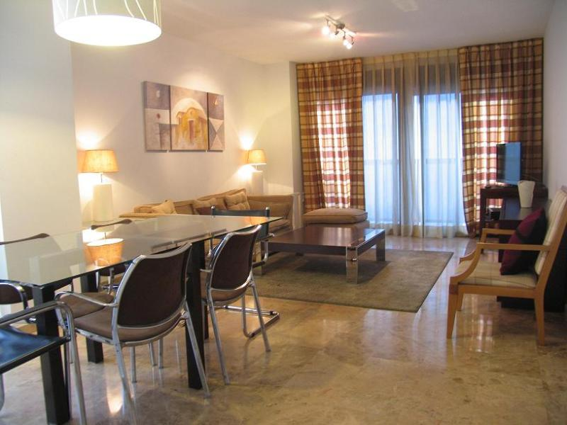 Living Room - Wonderful Apartment with wifi close to Ciudad de las Ciencias - Valencia - rentals
