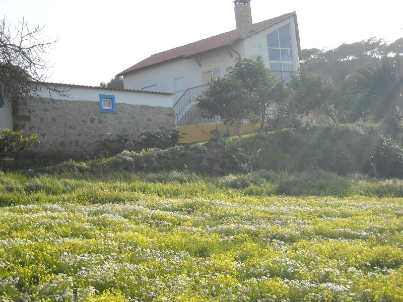House from Below - Ericeira - Country house with pool - Santo Isidoro - rentals