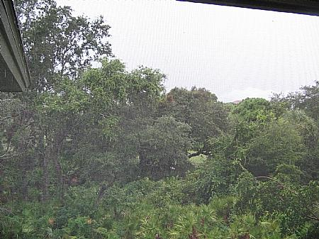 View - Wild Pines - Bonita Bay A-304 - Bonita Springs - rentals