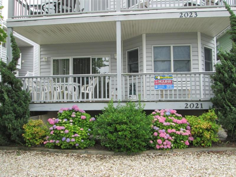 2021 Central Ave 1st Floor 2568 - Image 1 - Ocean City - rentals