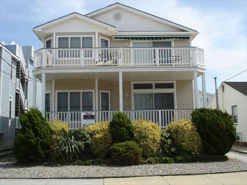 Asbury 1st 113259 - Image 1 - Ocean City - rentals