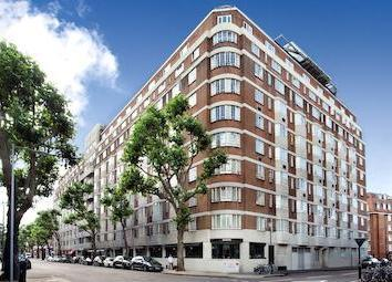 Kensington Budget Apartment near Sloane Square - Image 1 - London - rentals