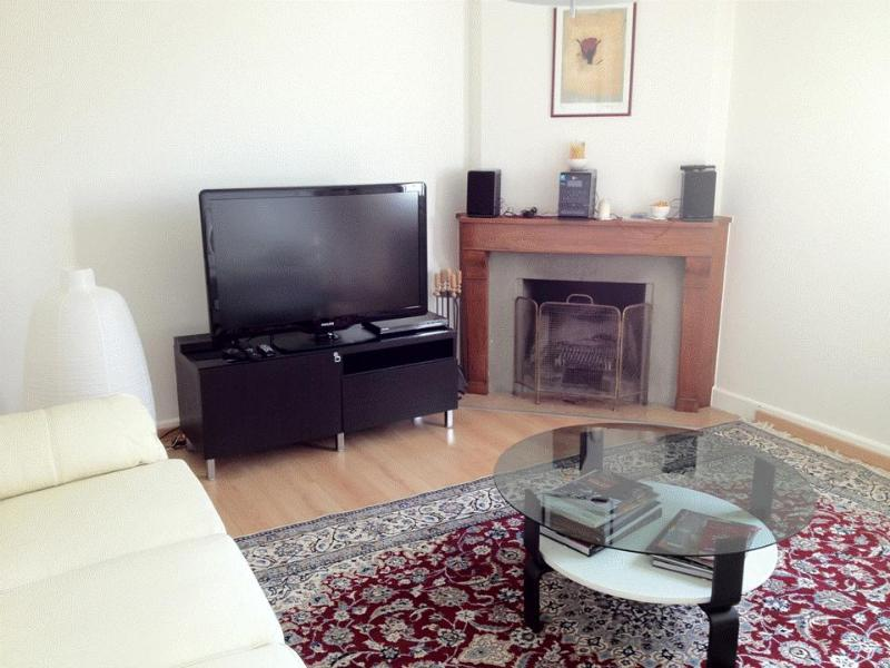 For rent, furnished and fully equipped apartment to Tolochenaz - Image 1 - Tolochenaz - rentals