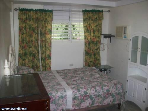 master of 2 bedrooms - Golden Triangle - Kingston - rentals