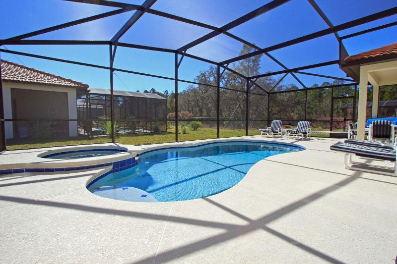 Stunning Villa - Fantasic South Facing Pool - Florida Sunset villa - Simply stunning - Kissimmee - rentals