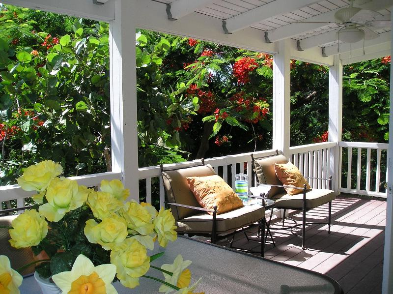 Enjoy the breeze - The Caribe Suite - Frederiksted - rentals
