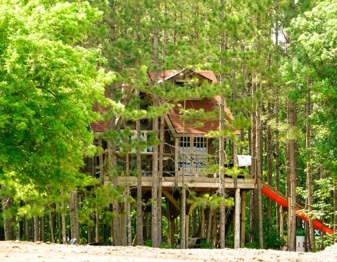 The treehouse has an adult sized SLIDE too ! - Treehouse retreat - Durham - rentals