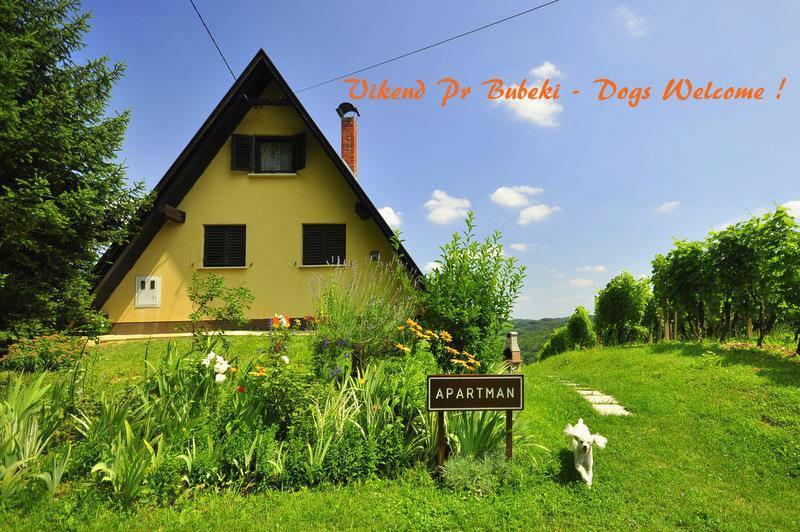 Vikend pri Bubeki - Vikend pri Bubeki - Sveti Martin na Muri - rentals