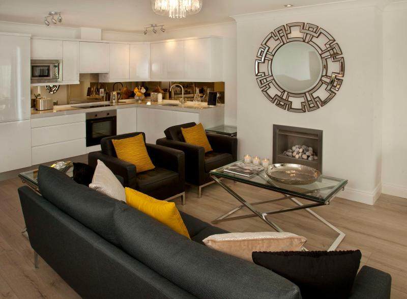 Large open plan living area with gas fireplace - Luxury & views - 2 mins walk beach, shops, pubs - Malahide - rentals