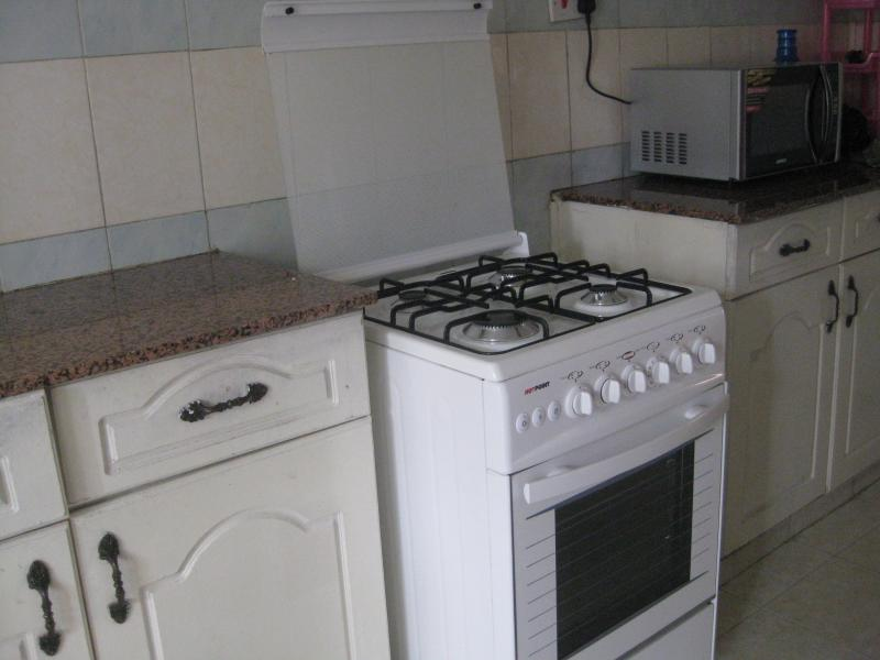 Kitchen stove - Spacious Apartment in Kilimani - Shaba National Reserve - rentals