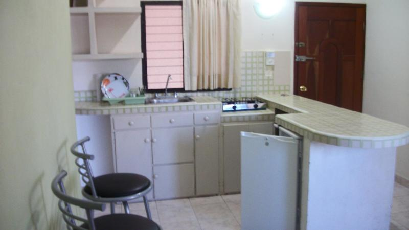 KITCHEN WELL EQUIPED - Are only 3 apartaments close cousie and safe well located - Playa del Carmen - rentals