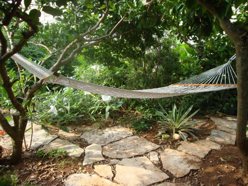 In garden - Lumbarda - Lumbarda - rentals