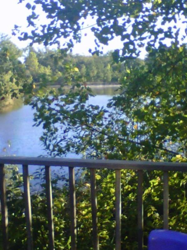View from the front porch - Country Cottage - Poplarville - rentals