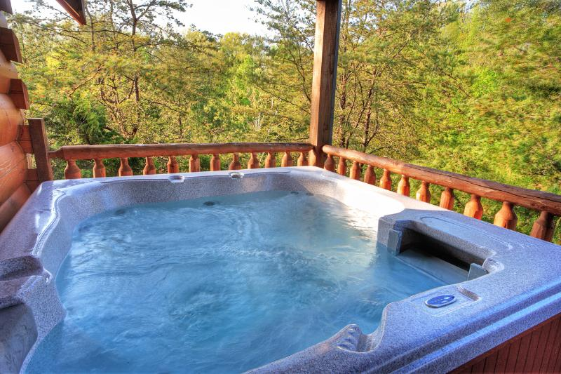 Enjoy the hot tub in privacy - GREAT LOCATION-1 Mile Off Pkwy; 3 King Suites Jacuzzis - Pigeon Forge - rentals