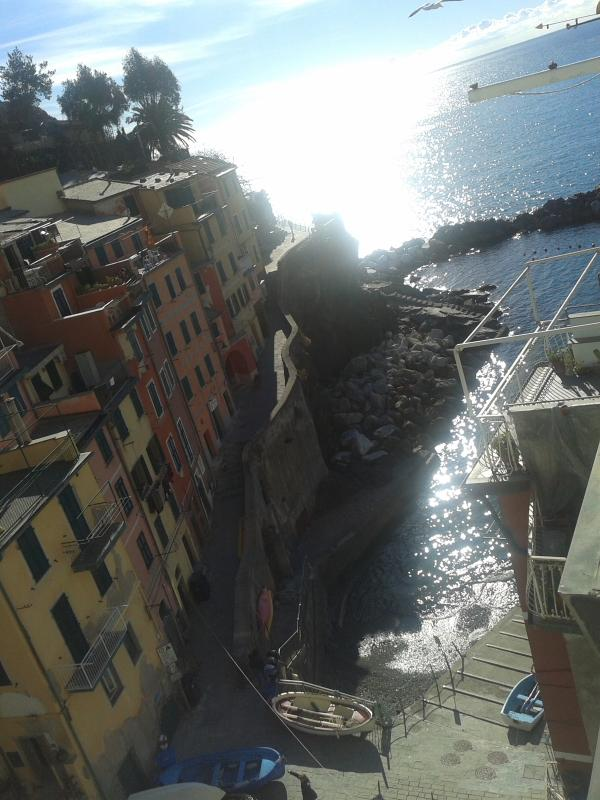 View from the terrace_1 - 5 Terre_House on the sea - Riomaggiore - rentals