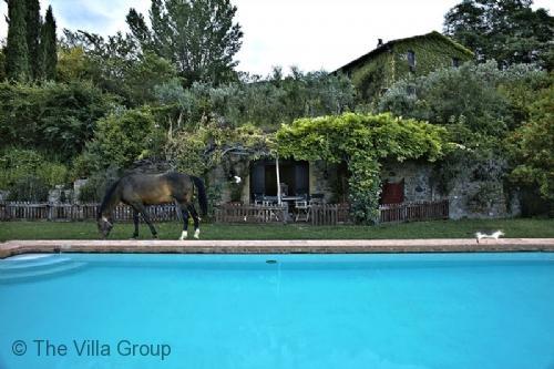 Villa 4809 - Image 1 - Ficulle - rentals