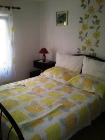 Apartments Elena - 44331-A1 - Image 1 - Rukavac - rentals