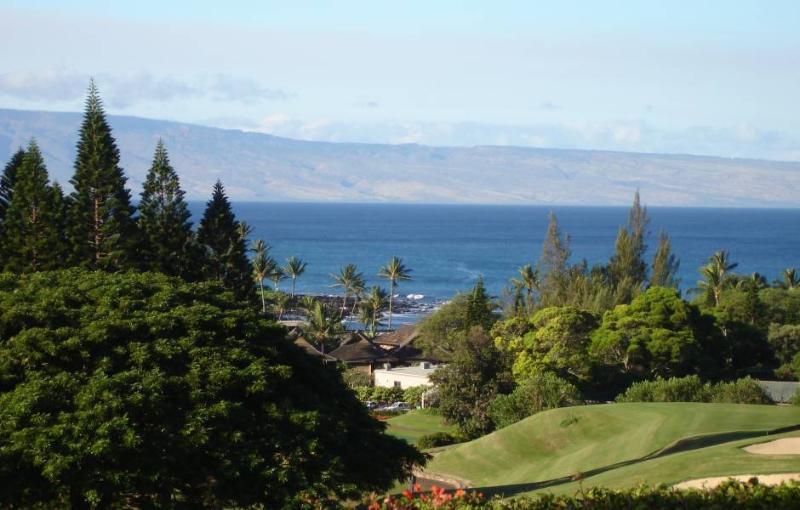 Great Ocean View - Hawaii Golf Resort Villa - Lahaina - rentals
