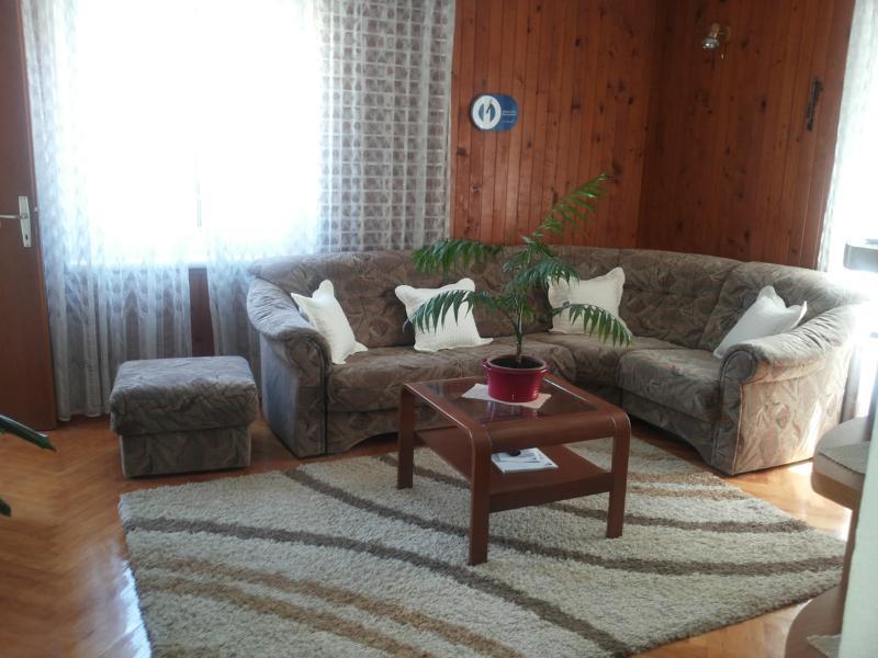 Apartment Olga - 45691-A1 - Image 1 - Pucisca - rentals