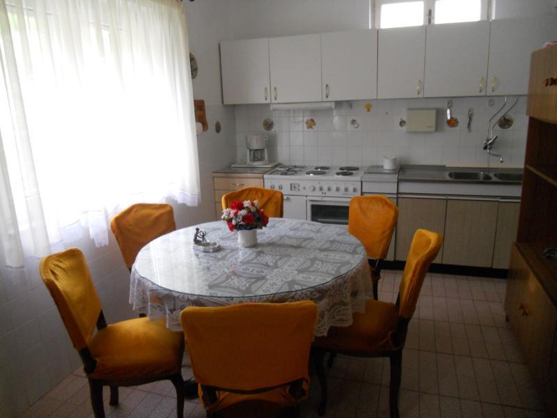 Apartment Nediljka - 45741-A1 - Image 1 - Sumpetar - rentals